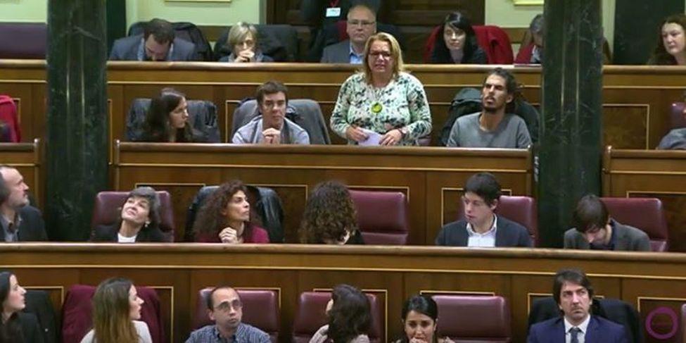Congreso-Diputados-FOTO-Facebook-Canarias_EDIIMA20160113_0651_18
