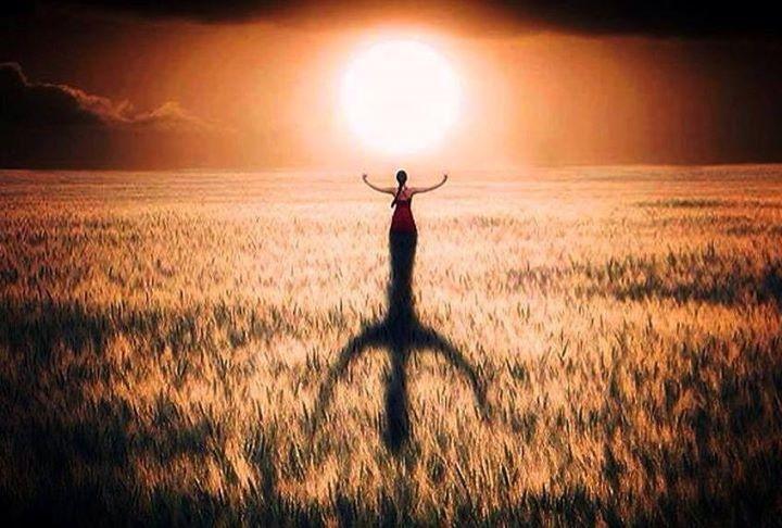 amazigh sun